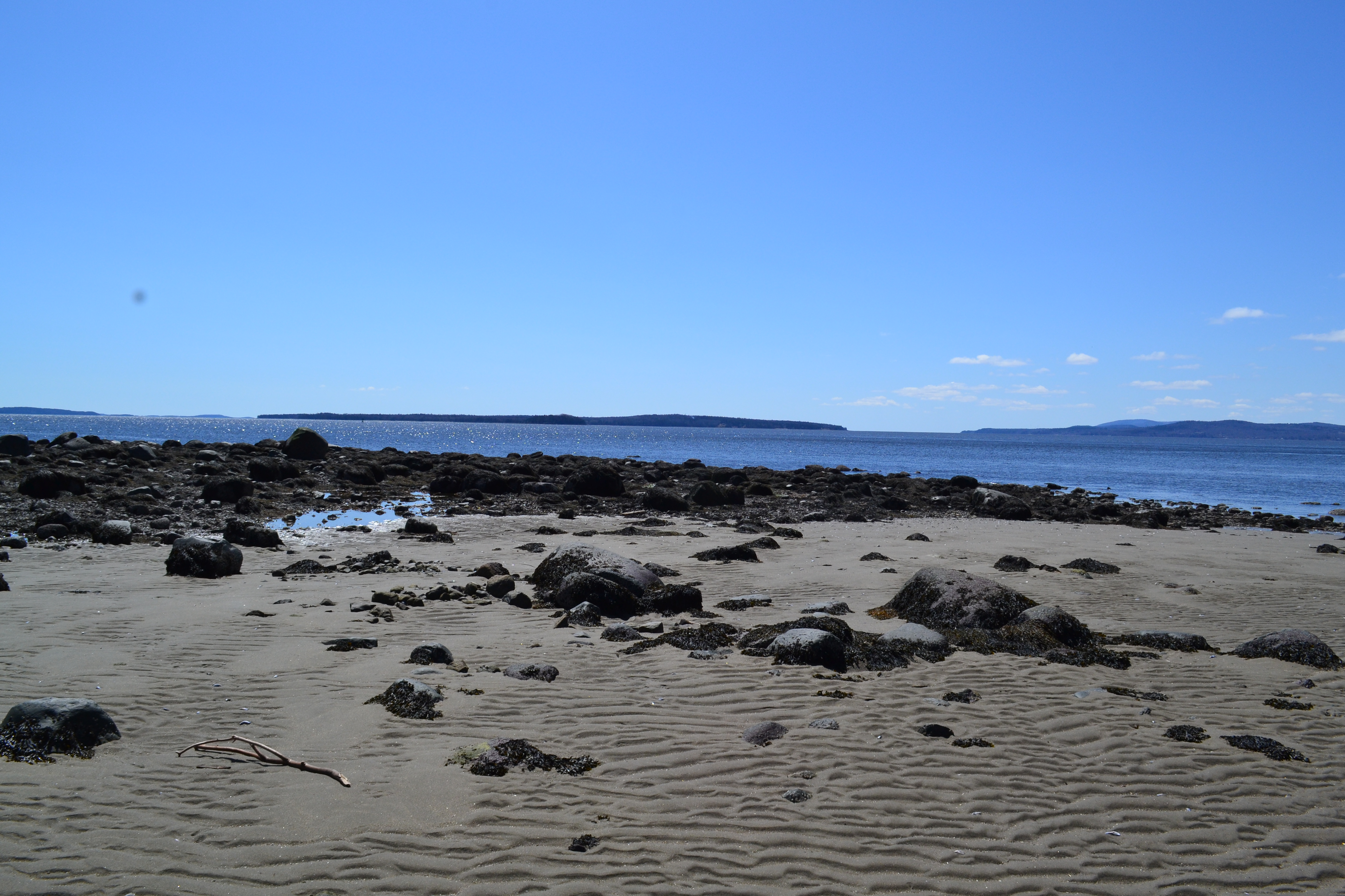 photo of Sears Island beach for 9-10-16 press release